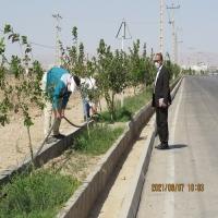 آبیاری قطره ای درختان فضای سبز شهرداری